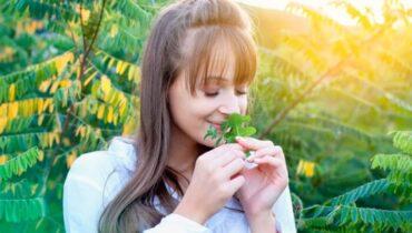 กลิ่นหอมธรรมชาติที่ช่วยคลายเครียด